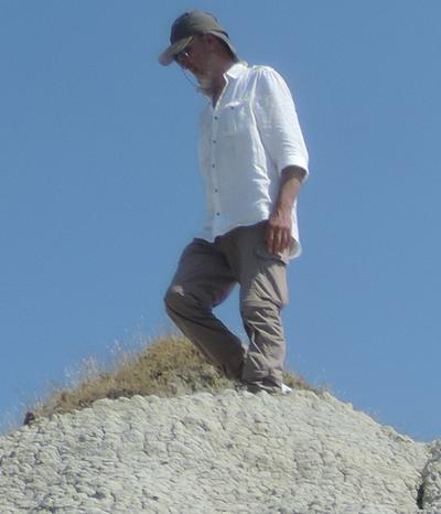 Dino Torri