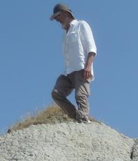 Dino b. Torri